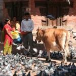 Kathmandu Durbar Square 2