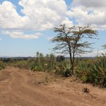 Unterwegs bei Elias in Matanya